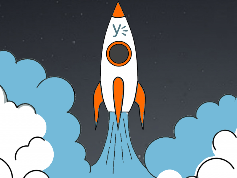 Yammer advies | Enterprise Social netwerk Yammer netwerk lancering | Yammer network launch